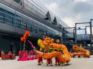 Lion_dance_B_24_Apr_2019-fill-800x600